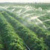 Nano Ganesh: Wireless solution for irrigation in Indian agriculture