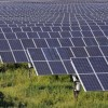 Business models are innovation engines for the Indian solar industry