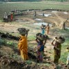 MNREGA illustrates how good governance and social mobilisation go hand-in-hand: World Bank