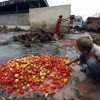 The tragedy of waste: 2 billion tonne of food produced is wasted