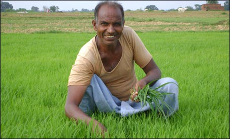 The Soil Health Card is a printed report that will be given to farmers once in three years for each of his/her land holding